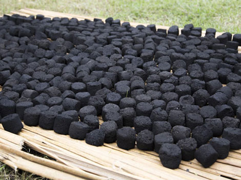 Sugarcane Bagasse Uses For Charcoal